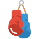 Sporturi in germana - boxen